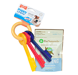 Nylabone Puppy Bacon Small Teething Keys Calming For Small Dogs 21 Chews Value Pack
